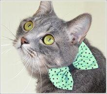 【アクセサリー】【犬】【猫】iDog&iCatおすましリボンタイ10mm幅用ドットリボン。商品画像3。