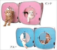 猫ちゃんたちの楽しい遊び場SPORT PETシリーズポップな四角いキューブの2個セットです★【i Cat...