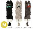白いおひげと、モケモケボディーがチャームポイント♪エキゾチックの社猫ムックモデルのキャッ...