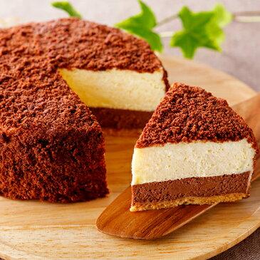 ネージュフロマージュ(ショコラ)(冷凍)【チーズケーキ】【チョコレートケーキ】