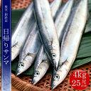 根室・釧路産【大】日帰りサンマ 4kg 25尾前後(冷蔵)【さんま】