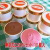 無添加体に優しい手作りアイスクリーム選べるこだわりセット10個入