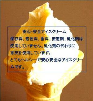 【送料込み】体に優しいアイスクリームおためしセット4個入自然の恵みをアイスクリームでお届け致します