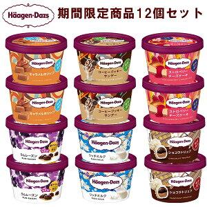 【HD】ハーゲンダッツ ミニカップ 期間限定6種類(各2個)計12個セット