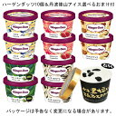【HD】ハーゲンダッツ アイスクリーム 【10個セット】+丹波 篠山ご当地アイス 【1個】おまけ付き