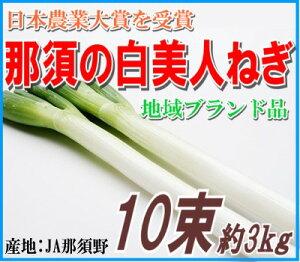【テレビでも紹介された、ご当地グルメ!】日本農業大賞受賞地域ブランド認証農産物那須の白美...