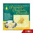パインチョコちんすこう 10個入り 個包装 沖縄 お土産 名護パイナップルパーク