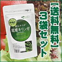 飲むサラダ・お茶サラダと呼ばれているからお通じ系にも。300種類の栄養素!【送料無料】 琉球...
