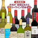 金賞ワイン入り デイリーワインセット 赤白ワイン12本 詰め合わせ 飲み比べ 世界各国 夢の競宴 送料無料(一部地域除く)