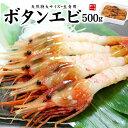 【送料無料】超特大ボタンエビ500g(9〜12尾) ぷりっぷ...