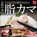 天然まぐろカマどっさり1キロ!塩焼き・煮付けに最適な脂のり!