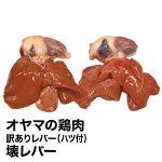 オヤマの鶏肉壊レバー[ハツ付]1KG[訳ありレバー]国産訳ありからあげ鶏肉ペットフード肉無添加