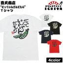 【豊天商店】「だっていんげんだもの」Tシャツ 全4色 S・M・L・XL 【おもしろTシャツ みつを風 プレゼント 土産 男女兼用】