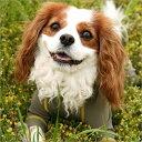 アルファアイコン【送料無料】【中型犬/L・LL】フルドッグガード(08モデル)(ALPHAICON BASIC...