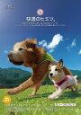 熱がこもらず軽くドライな着心地アルファアイコン【大型犬/2XL】サマークーリングタンクトップ...