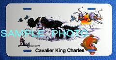 ライセンスプレート (アウトレット)キャバリア キングチャールズスパニエル[アイシーテールズ・世界の犬雑貨]
