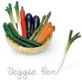 VeggiePen/ベジーペン/野菜型ボールペン/ブランドmagnet