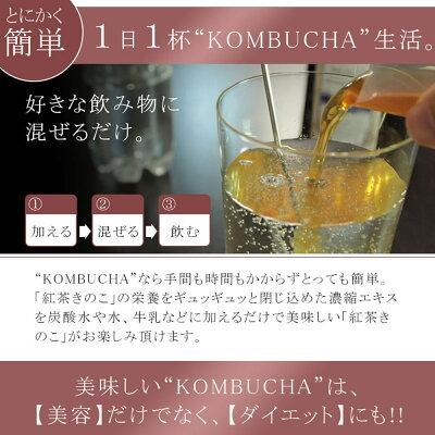 コンブチャマザー/コンブチャ/酵素ダイエット/酵素ドリンク/菌活/紅茶きのこ