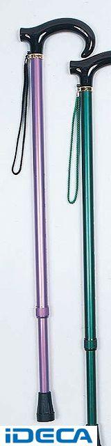 DS49984 アルミ製カラー杖 房付 【1】紫