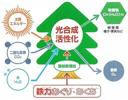 農業用鉄力あくあF10(2リットル)