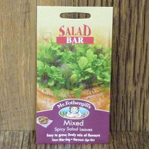 種子・種・家庭菜園・サラダの井手商会。Salad Bar Collection サラダ・バー・コレクションサラ...
