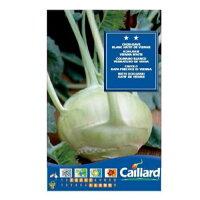 コールラビBLANCHATIFDEVIENNE(No.12000)[コールラビ、家庭菜園、種、種子]