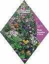 フランス直輸入の花の種。ワイルドフラワーMIX(No.218)
