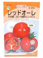 家庭菜園・種・トマト・種子の井手商会。(カネコ交配)フルーツ感覚のジャンボな一口トマト。...