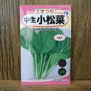 中生小松菜(種:ウタネ)[小松菜 種 種子 家庭菜園]