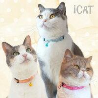 iCatアイキャットカジュアルカラーキャンディードット。