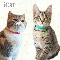 iCatアイキャットキティカラーカラフルピンドット。