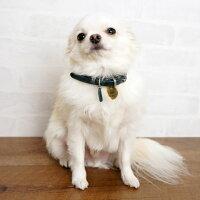 【迷子札】【犬】【猫】iDog&iCatオリジナルメタルネームタグ迷子札クラウン。オシャレなタグでしょ?マメって呼んでね!
