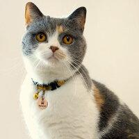 【迷子札】【犬】【猫】iDog&iCatオリジナルメタルネームタグ迷子札クラウン。ブリショー3.0kgのこまちちゃんはブロンズS使用