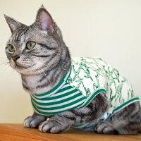 【虫よけ】【犬】【服】アメショー4.0kgのノエルくんはグリーン×グリーンボーダーのDMを着用