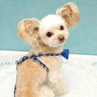 【犬】【首輪】【ハーネス】バックスタイルはこんな感じ