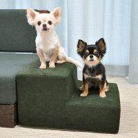 【犬】【階段】2.4kgこむぎくん(左)、1.9kgきなこちゃん(右)はフォレストグリーンを使用