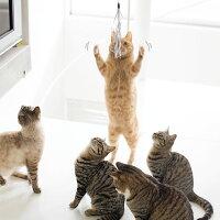 【猫】【おもちゃ】我慢できずに飛び付くはちみつくん(4.6kg)