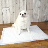 【犬トイレ】業務用国産ペットシーツ薄型お試し1パック【トイレ用品トイレシートペットシーツ犬のトイレ用品犬のトイレ犬用トイレトイレタリー】【idog】