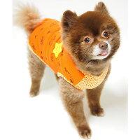 ポメ4.3kgの獅子丸くんはオレンジのLを着用