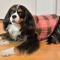 キャバリア7.5kgルージュちゃんはピンクXLを着用