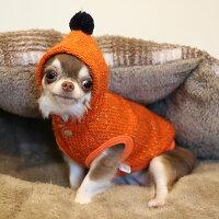 チワワ1.58kgオリーブちゃんはオレンジXSを着用