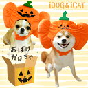 【ハロウィンSALE★40%OFF】【 ハロウィン 犬 】iDog 変身かぶりものスヌード お...