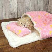 スコティッシュ5.0kgのコマリはピンクのお布団で夢の中…