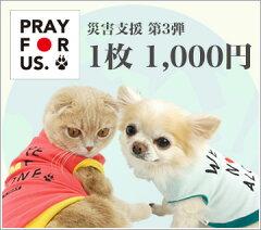 被災地のペット達の幸せを願って・・・・・・・・・・あなたの一枚で救われるペット達がいます...