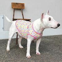 ブルテリア15.8kgのつくしちゃんはピンクのXXLを着用