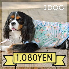 【犬服 タンク】 iDog アイドッグ 襟付トロピカルタンク[犬の服のiDog]