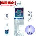 【数量限定特別価格】シリカ濃縮液 ケイ素 1L+100ml ...