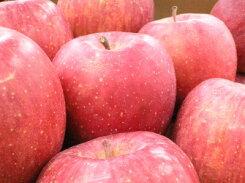 福島産光センサーサンふじりんご