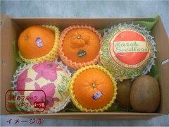 ★送料無料★贈って喜ばれる果物詰め合わせ!いづみ屋のフルーツアレンジメントで真心をお届け...