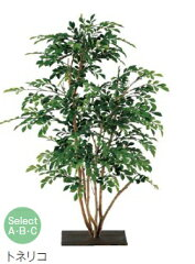 「送料無料」「代引不可」グローベン A70ND341A/B/C トリネコ 屋内用 樹木 人工観葉植物